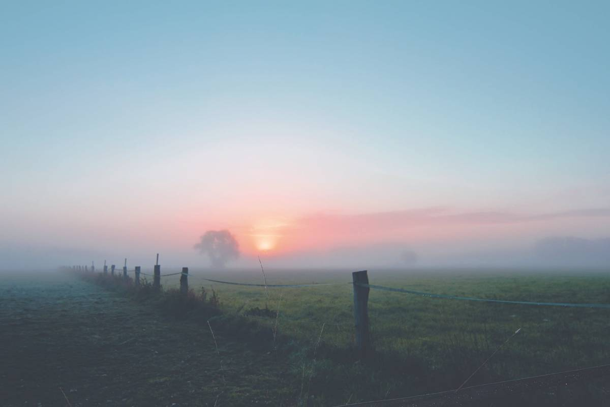 Jak powstaje mgła?