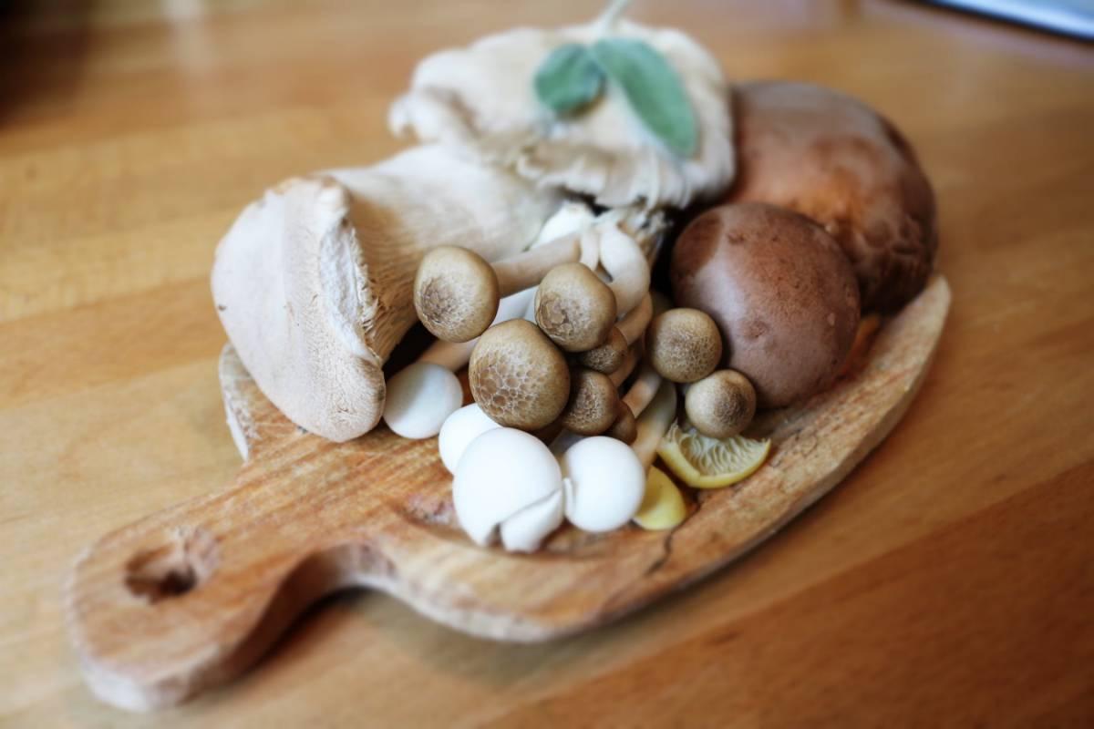 Jak odróżnić trujący grzyb od jadalnego?